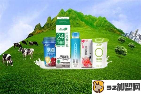 雪兰牛奶营养牛奶